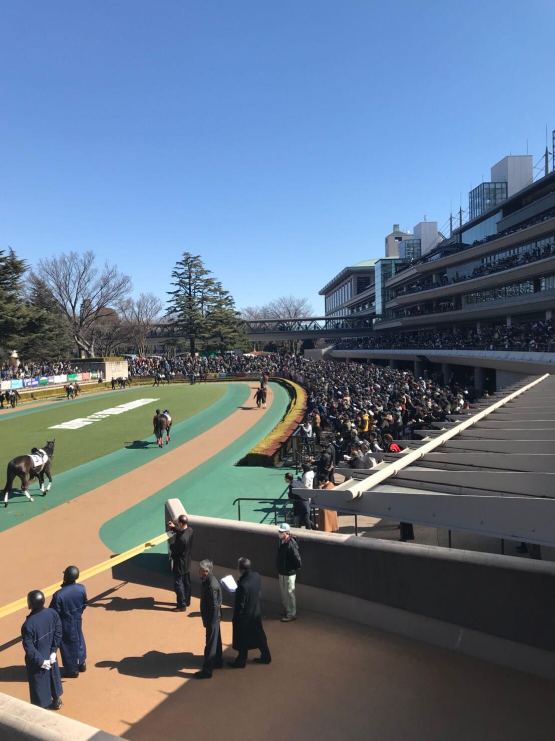 東京競馬場7