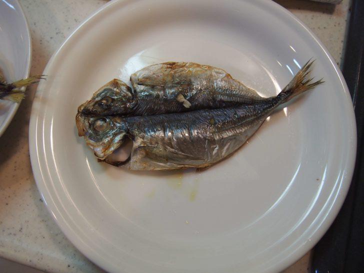 干物の焼き方:魚焼きグリル3