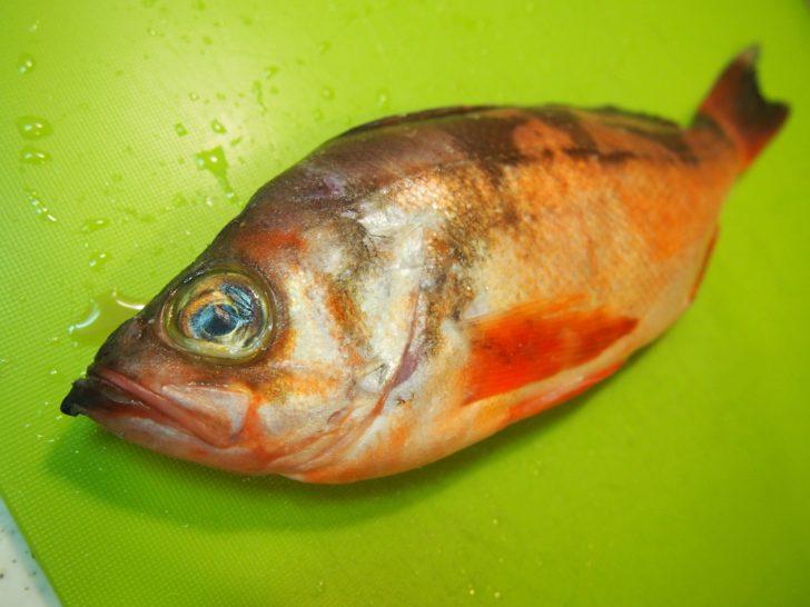 メバルの魚焼きに挑戦