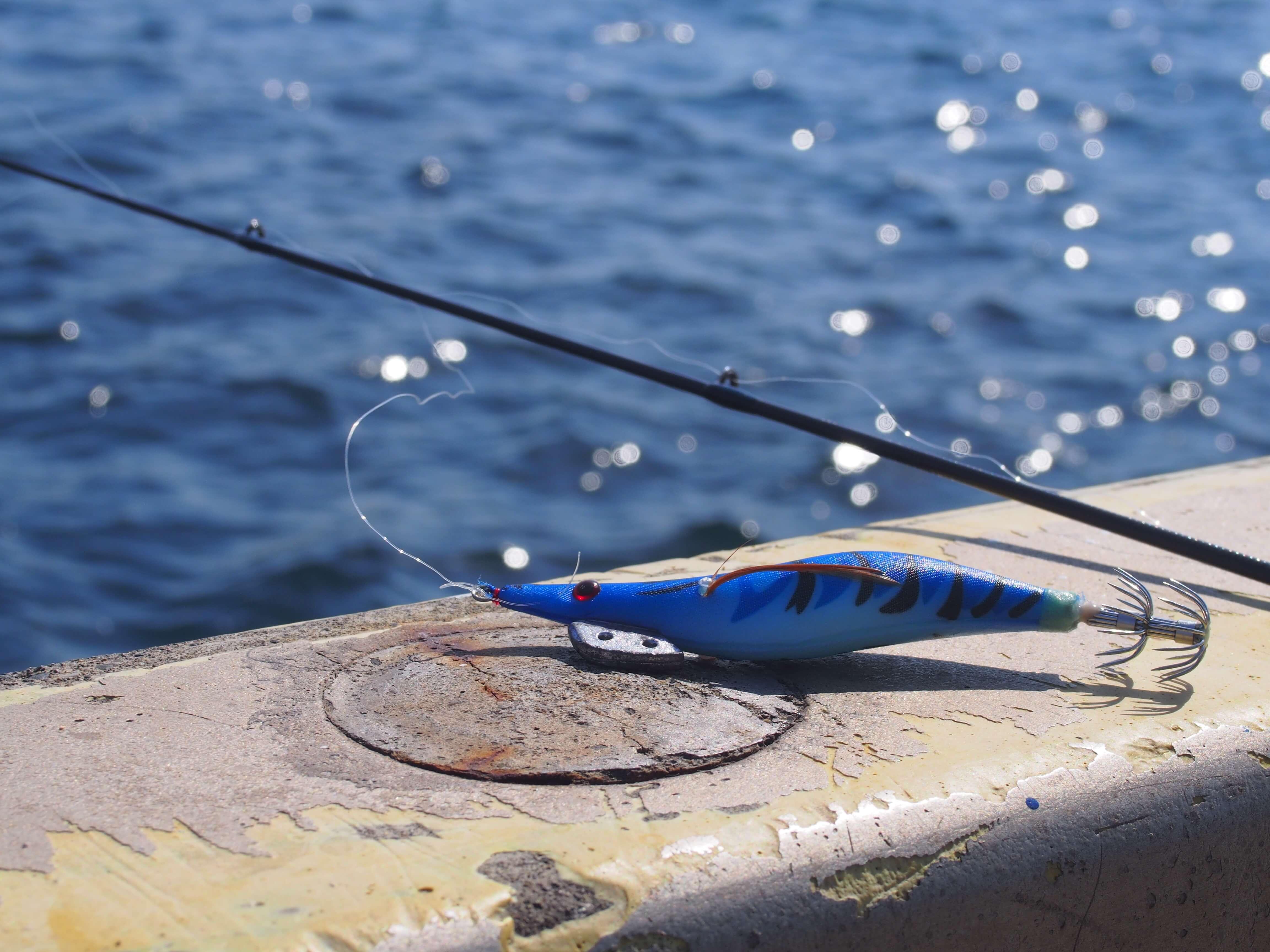 中々イカを釣ってくれないエギ一号