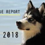 <REVENUE REPORT>2018年5月|ひかるぶろぐ