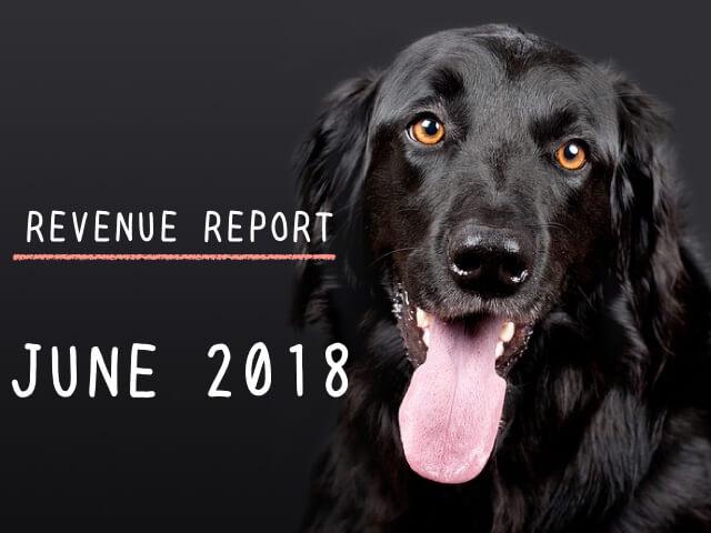 <REVENUE REPORT>2018年6月の収入報告|ひかるぶろぐ