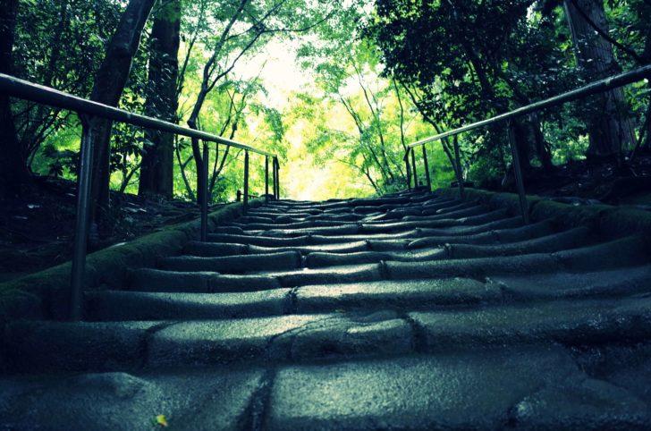 石階段を登ります