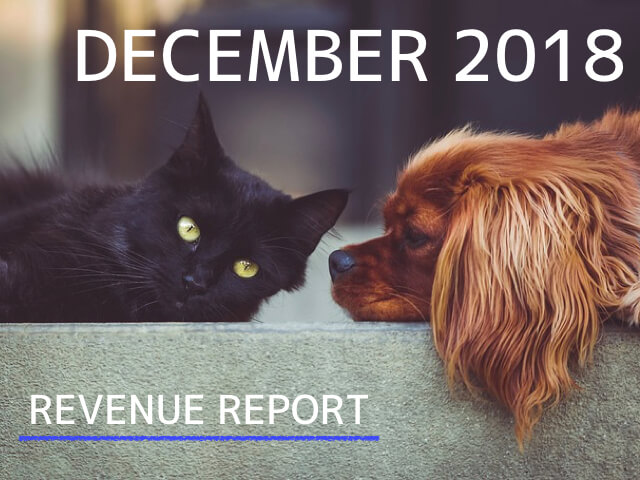 《REVENUE REPORT》2018年12月